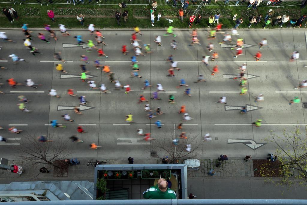 Полумарафон в Вене: пробежать полгорода и получить звезду в награду
