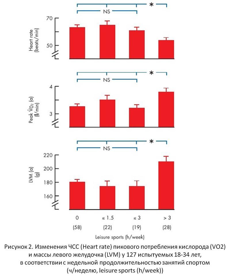 Рисунок 2. Изменения ЧСС (Heart rate) пикового потребления кислорода (VO2) и массы левого желудочка (LVM) у 127 испытуемых 18-34 лет, в соответствии с недельной продолжительностью занятий спортом (ч/неделю, leisure sports (h/week))
