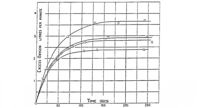 Что такое VO2max и кислородный каскад 2