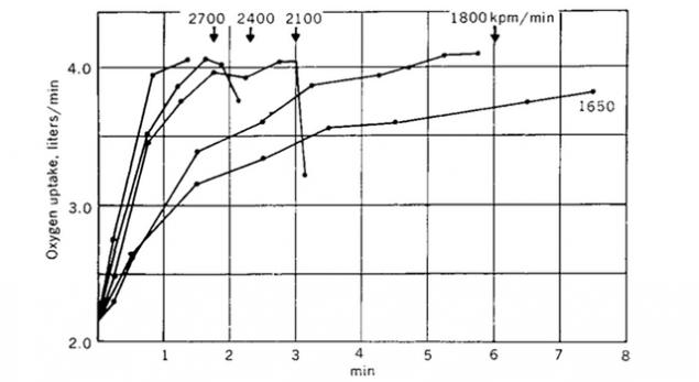 Что такое VO2max и кислородный каскад