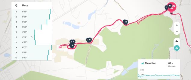 FitBit Surge - устройство строящее мосты между спортивными GPS часами и тренерами активностей 11