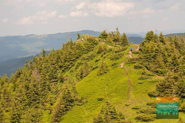 Chornogora Sky Marathon: планктон в горах или как я забросил бег и стал ультрамарафонцем 16