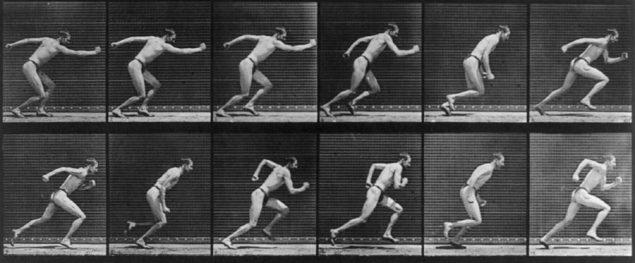 Бег на длинные дистанции и эволюция человека 2