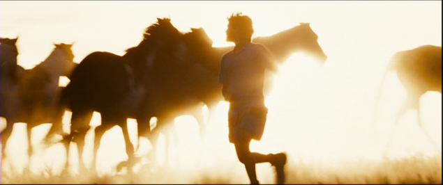 Как бег повлиял на эволюцию Homo Sapiens и почему человек - лучший бегун на длинные дистанции