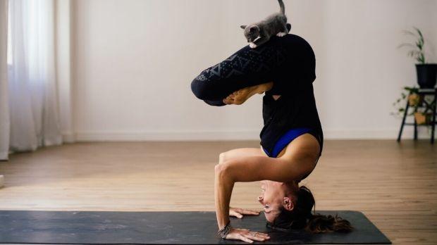Польза и вред йоги: ответы на вопросы начинающих 4