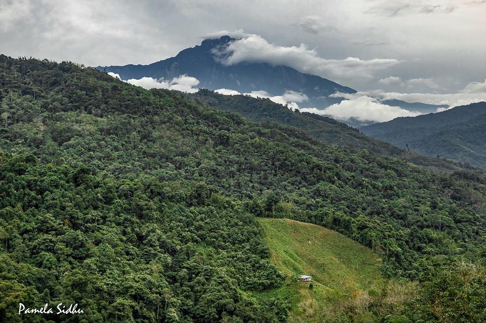 Отчет о Borneo Ultrа Trail Marathon