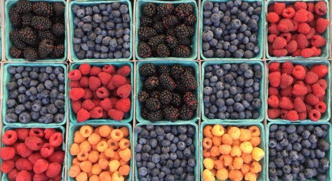 5 летних рецептов с ягодами