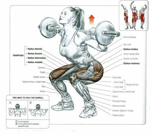 Чим корисні присідання для бігунів і як їх виконувати